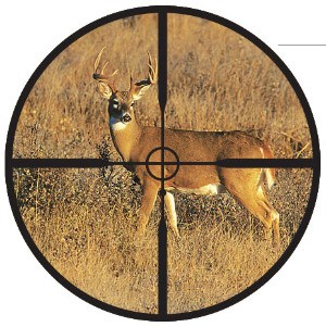 Redfield_Accu-Range_Reticle