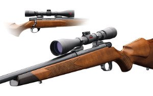revolution scope mounted on rifle