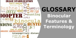 Glossary of Binocular Features and Terminology