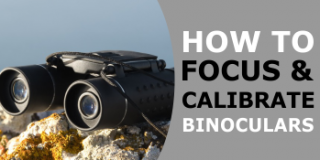How to Focus Binoculars & Correctly Calibrate Your Binoculars for Your Eyes