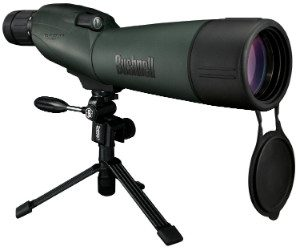 bushnell trophy xlt 20-60x65 spotting scope on tripod