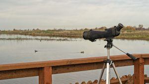 a spotting scope mounted on a tripod is ready for birdwatching on a bordwalk