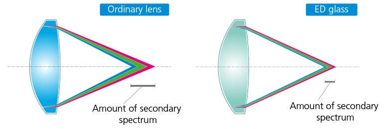 Ordinary Lens vs ED Glass