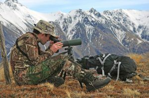 hunter scoping for himalayan tahr in the southern alps of new zealand