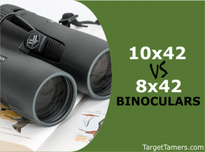 10X42 Versus 8X42 Binoculars for Hunting, Birding and Safari