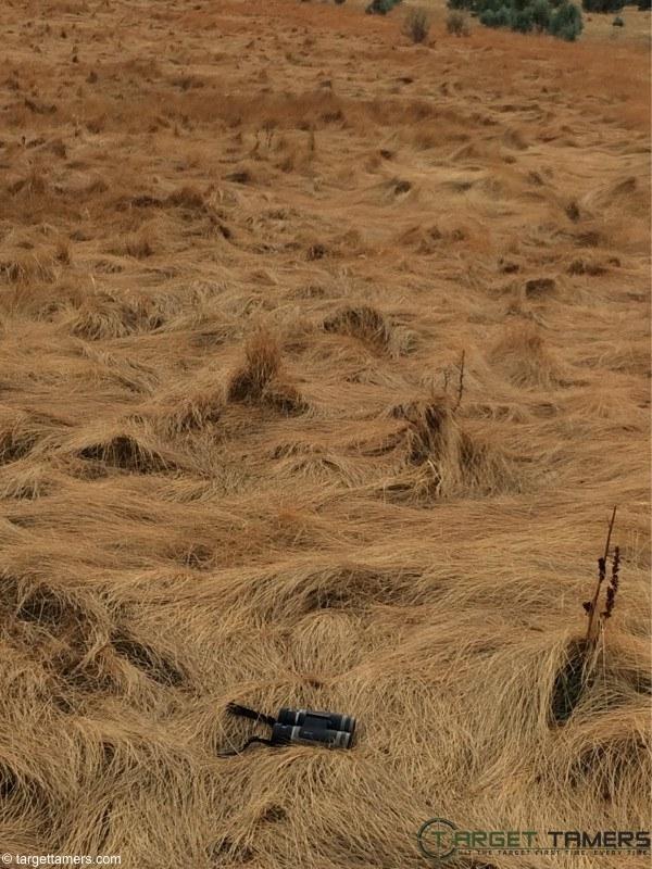Burris Droptine 10X42 binoculars sitting in grassy field