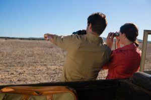 rear-view-of-couple-looking-through-binoculars-on-safari
