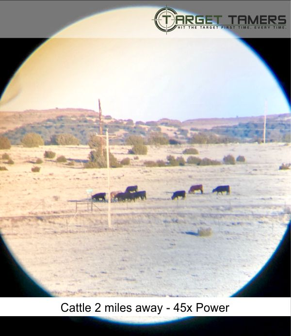 Photo of grazing cattle taken at 45x power through Everglade spotter