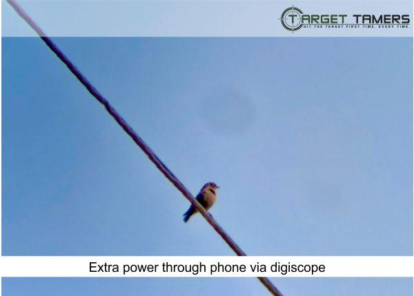 Photo of bird sitting on powerline taken via digiscope adaptor on Carson spotter