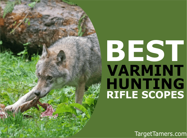 Rifle Scopes for Varmint Hunting
