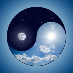 Day Night Ying Yang