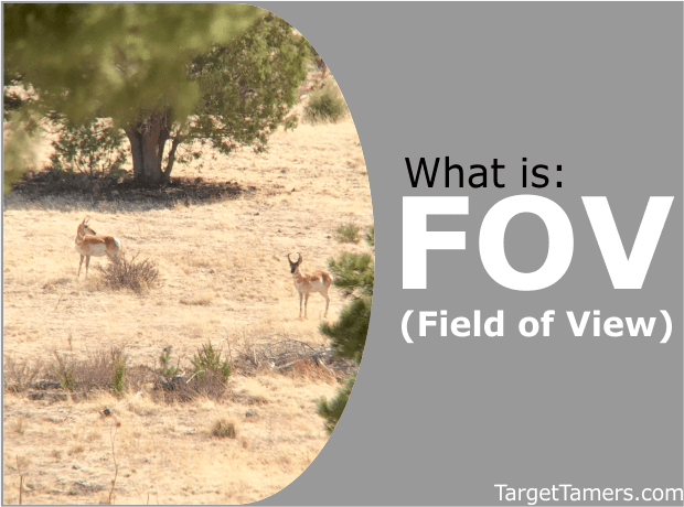Optics Field of View Explained - Binoculars, Spotting Scopes, Rifle Scopes