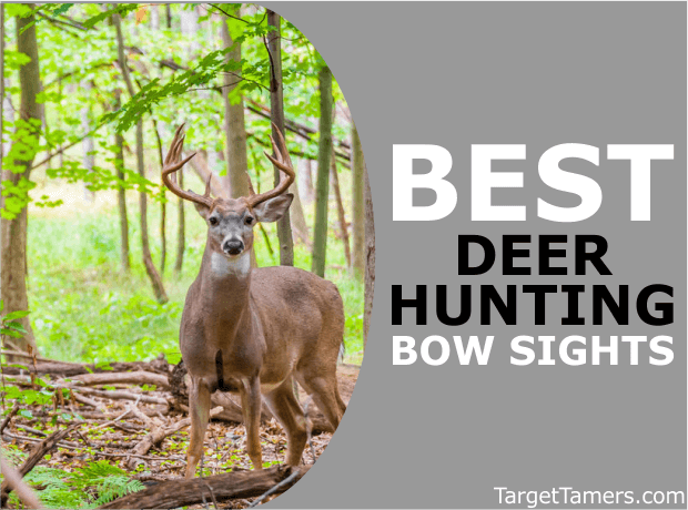 The Best Deer Hunting Bow Sights