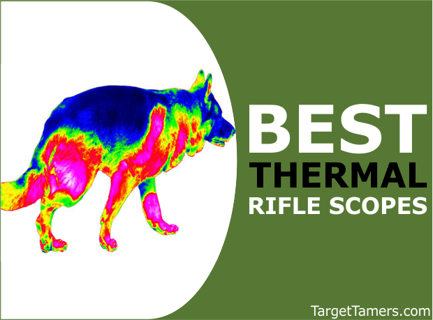 Best Thermal Scope for Surveillance & Hunting