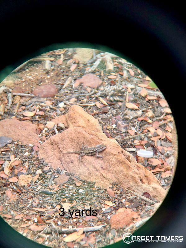 Close focus of wildlife looking through Maven C.1 8x42 binoculars