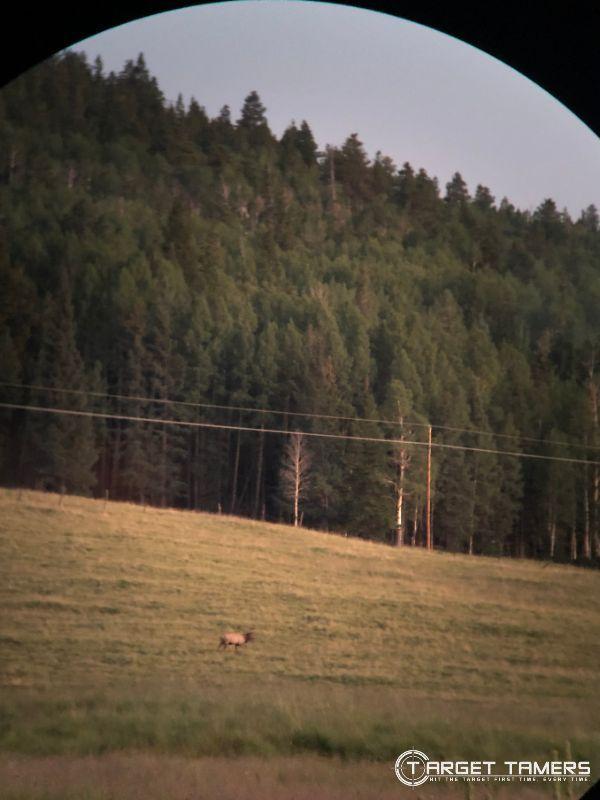 Elk in distance using Maven B1.2 10x42 binocular