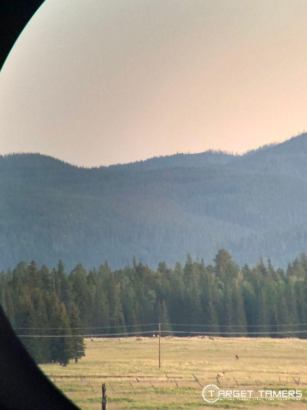 looking at Elk in distance through Maven B1.2 10x42 binoculars