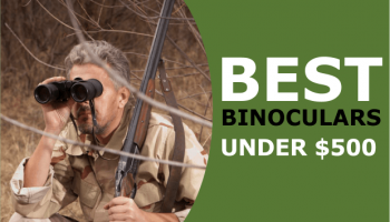 Best Binoculars Less Than $500: We Check Out the High Quality Optics Available in 2020