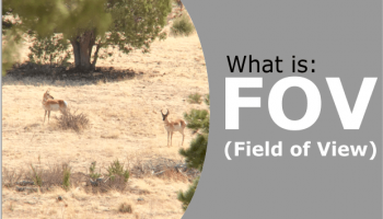 Field of View Explained - What Is FOV & How Does It Relate To Binoculars & Scopes?