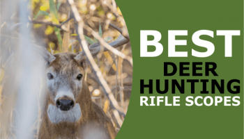 Best Rifle Scope for Deer Hunting: Our Top 7 (Including Low Budget Options)